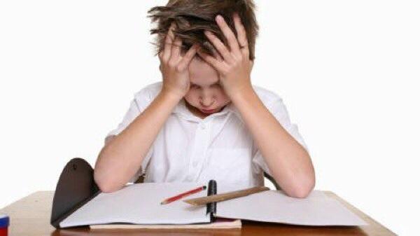 Pour des devoirs facultatifs si c 39 est pas malheureux - Je donne gratuit maison ...